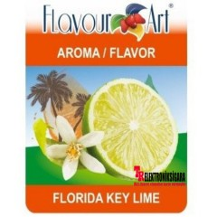 Flavour Art E-Likit Aroması Florida Key Lime 10ML